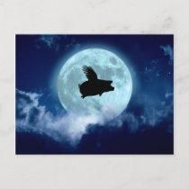 Nocturnal Flying Pig Postcard
