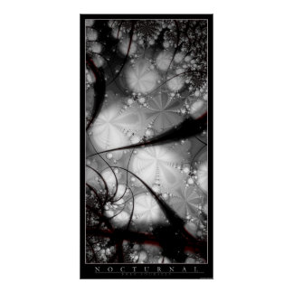 Nocturnal Print