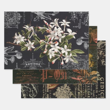 NOCTURNE FLORAL APOTHECARY DECOUPAGE WRAPPING PAPER SHEETS