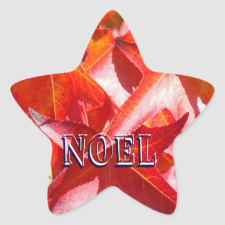 NOEL stickers Holiday Card Seals Red LEAVES