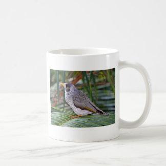 Noisy Miner Bird, Adelaide, Australia Coffee Mug
