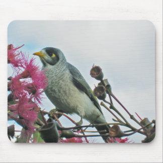 """Noisy Miner"" bird mouse pad"