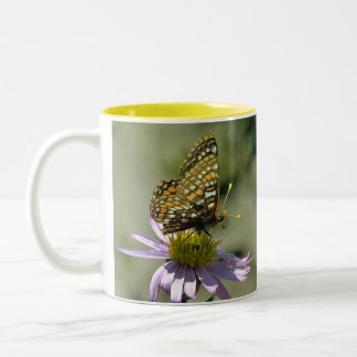 Nokomis Fritillary Two-Tone Coffee Mug