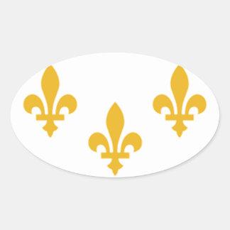 NOLA Flag.png Oval Sticker