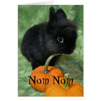Nom Nom Halloween Bunny Card