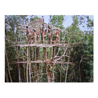 Nómada de bosque korowai tarjeta postal