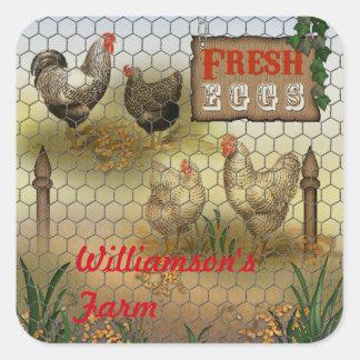 Nombre fresco de los huevos de la granja de pollos pegatina cuadrada