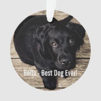 Nombre negro personalizado de la foto del perro