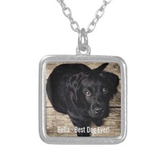 Nombre negro personalizado de la foto del perro colgante cuadrado