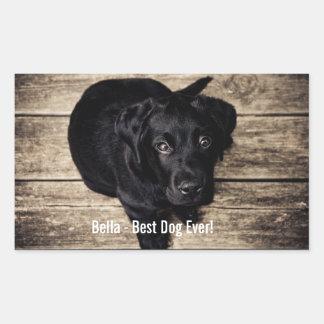 Nombre negro personalizado de la foto del perro pegatina rectangular