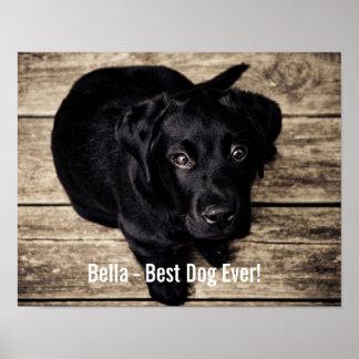 Nombre negro personalizado de la foto del perro póster