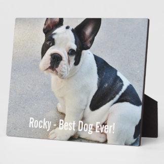 Nombre personalizado de la foto del dogo y del placas para mostrar