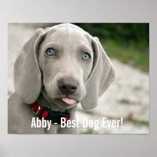 Nombre personalizado de la foto del perro de póster