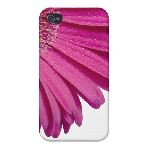 Nombre personalizado personalizado rosado de los c iPhone 4 protector