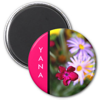 Nombre: Yana Imán Redondo 5 Cm