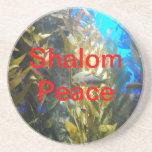 Nombres de DIOS - Shalom: Paz Posavasos Personalizados