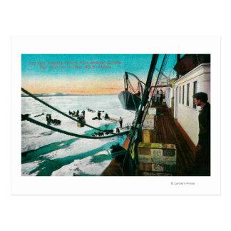 Nome, Alaska Steamer Corwin Unloading Freight Postcard