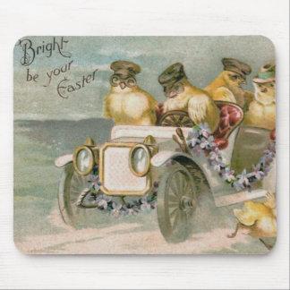 Nomeolvides del coche antiguo del polluelo de tapete de raton