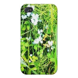 Nomeolvides iPhone 4/4S Carcasas