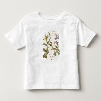 Nomeolvides T Shirt