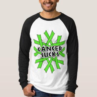Non-Hodgkins Lymphoma Cancer Sucks Tee Shirt