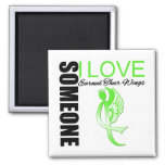 Non Hodgkins Lymphoma Someone I Love Earned Wings Refrigerator Magnets