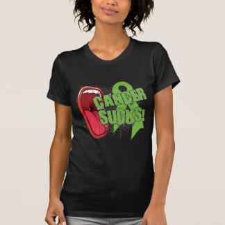 Non Hodgkin's Lymphoma Sucks Scream It Tee Shirts