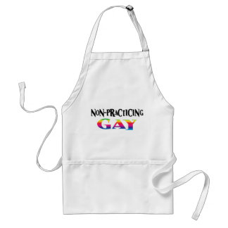 Non-Practicing Gay Adult Apron