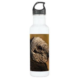 Nooks & Crannies 24oz Water Bottle