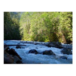 Nooksack River Postcard