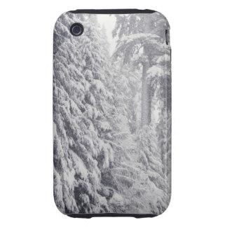 Nooksack River, Washington iPhone 3 Tough Cover