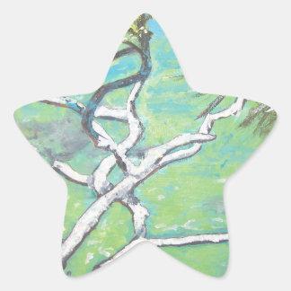 Noosa Pandanas Star Sticker