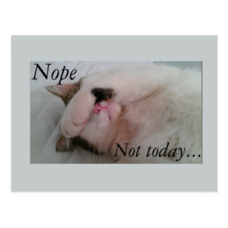 """Nope not today"" sleepy cat hiding eyes Postcards"