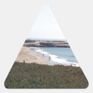 NorCal Coastline Triangle Sticker