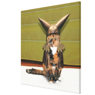 Nordic Cat is Not Amused Stretched Canvas Prints