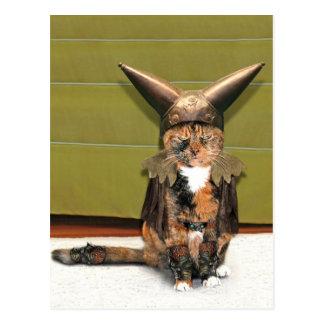 Nordic Cat is Not Amused Postcard