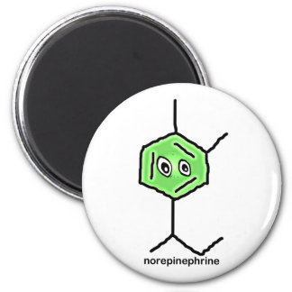 Norepinephrine Magnet