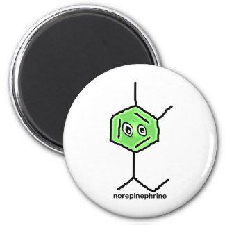 Norepinephrine Neurotransmitter Magnet