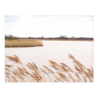 Norfolk Broads Postcards