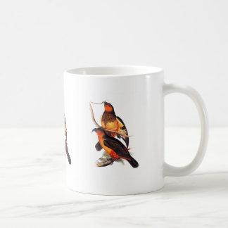 Norfolk Island Kaka Coffee Mug