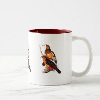 Norfolk Island Kaka Two-Tone Coffee Mug