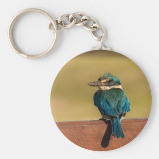 Norfolk Kingfisher Keychain