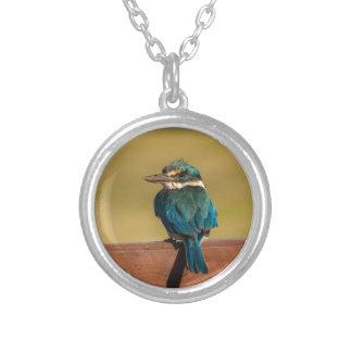 Norfolk Kingfisher Round Pendant Necklace