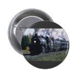Norfolk/Southern No. 1218 at KeNova WVA Buttons
