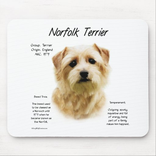 Norfolk Terrier History Design Mouse Pad
