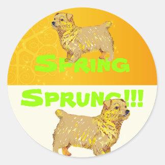 Norfolk Terrier Pegatina Redonda