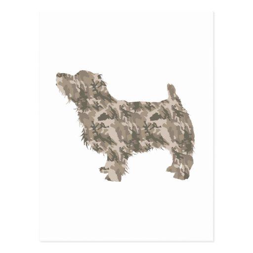 Norfolk Terrier Postcard