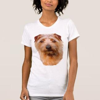Norfolk Terrier T Shirt