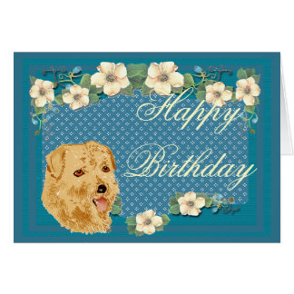 Norfolk Terrier - Turquoise Floral Design Card