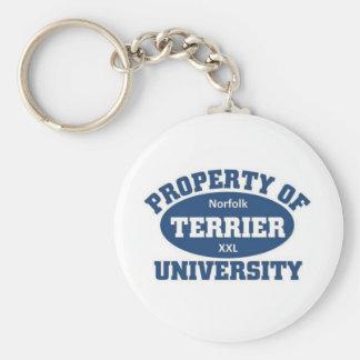 Norfolk Terrier University Keychains